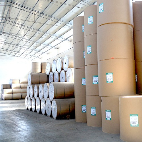 Jumbo thermal paper roll 565mm
